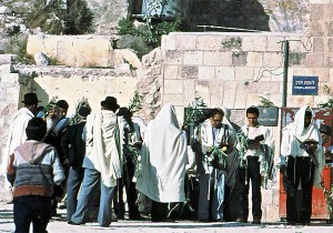 Men praying near the Kotel in Jerusalem on Hoshana Rabbah These men are holding aravot (bundles of willow twigs)
