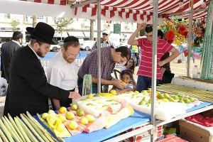 Customers peruse etrogim and lulavim at an Israeli street stall prior to purchasing
