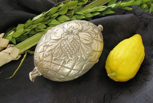 An etrog with a protective case in which to transport and store it. Protective cases for etrogs are available in a variety of designs and materials.
