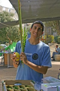 A man at an Israeli street stall deciding which lulav set to buy. (Photo reproduced here with the kind permission of Alex Ringer, Israel.)