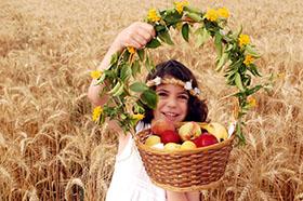 The 3 Pilgrim Festivals 2