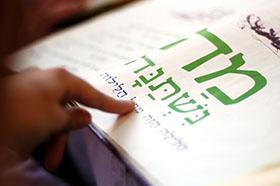 The Seder 2